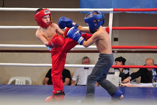 Во владимирской области стартовал областной турнир по боксу кубок минина и пожарского